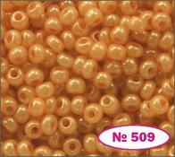 Beads 10/0 № 17389 / 509 (shell)