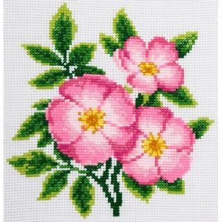 "Cross stitch embroidery kit ''Dog Rose"""