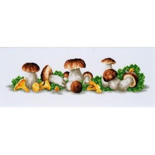 "Cross stitch embroidery kit ""Mushroom Boom"""