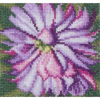Cross stitch embroidery kit ''Aster""